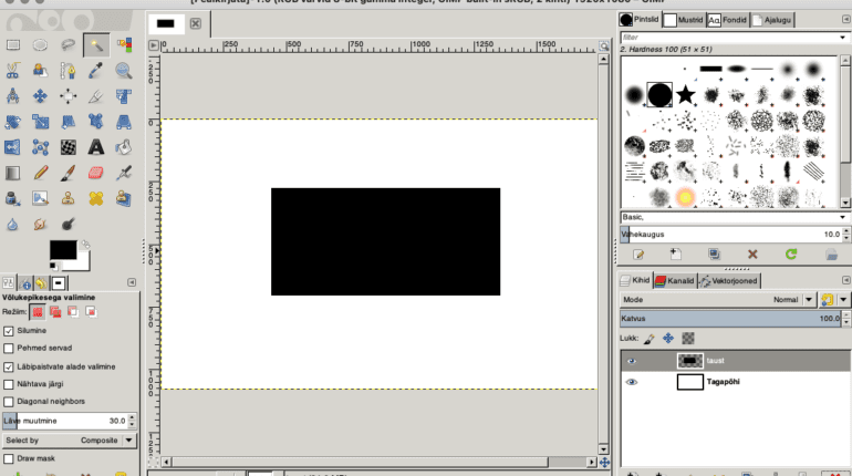 GIMP working area very slow on Mac after Big Sur update